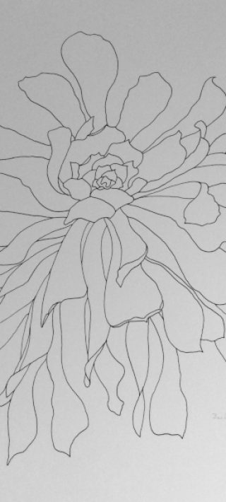flower-outline-2015-signed-500px